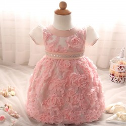Autumn  Winter New Baby Hundred Day Dress Girl Rose Princess Dress  1st Birthday Outfit Baby Girl Birthday Dresses